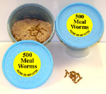1000 Meal Worms packed in 2 plastic containers.